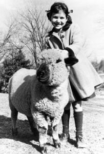 Interesting that I am wearing The Coat and posing with a sheep!